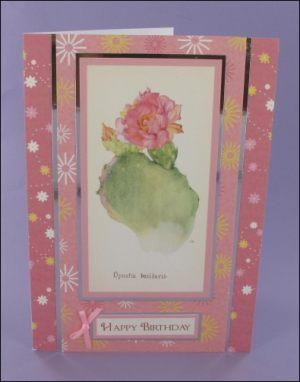 Opuntia Basilaris Cactus card