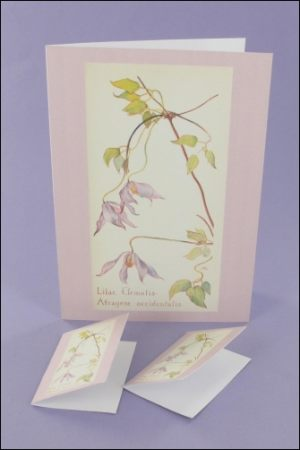 Lilac Clematis Notecard & Tags
