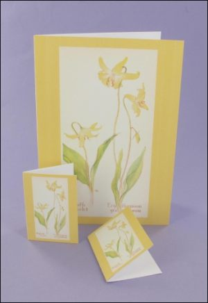 Dogtooth Violet Notecard & Tags