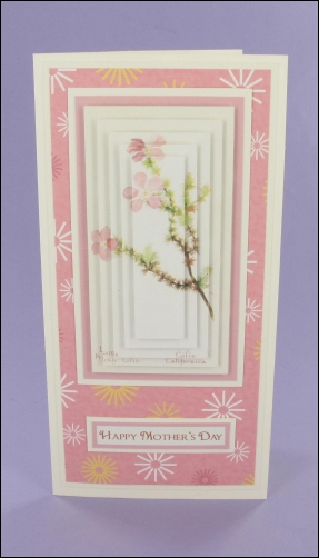 Large Prickly Mother's Day Pyramage Card