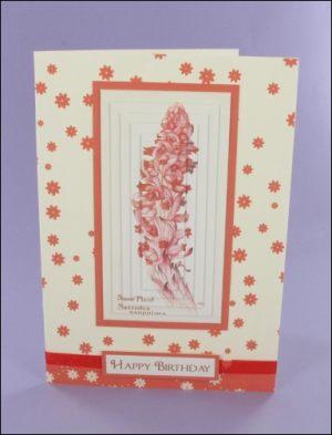 Snow Plant Pyramage Card