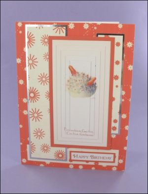 Pincushion Cactus Large Pyramage Card