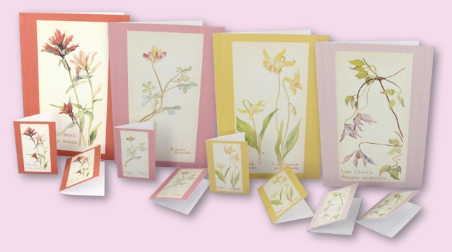 510183b29ea6dwild-flowers-notecards-1.jpg