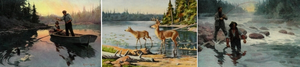 North American Wildlife & Outdoors