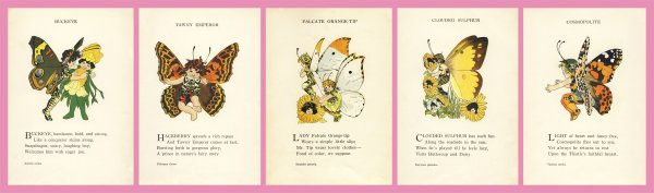 Butterfly Babies